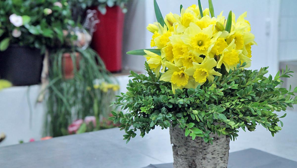 Le bouquet de jonquilles